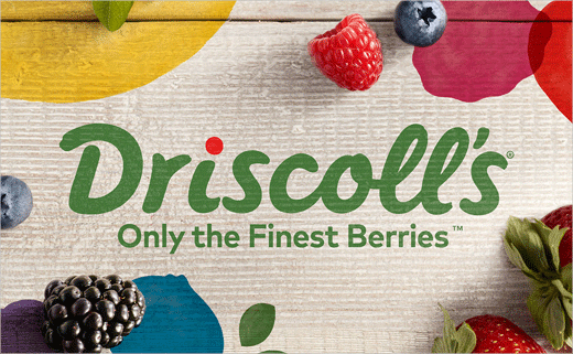 Berry Brand Driscoll's Gets New Identity by Pearlfisher